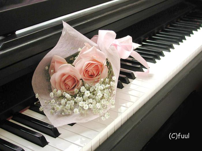 2006-07-04_165045_flower-piano_fuul (700x525, 51Kb)