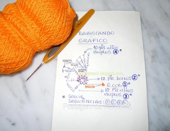FlorNorminhaGFco (700x538, 114Kb)