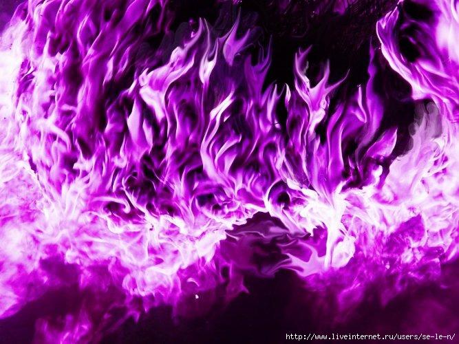 VioletFlame (667x500, 231Kb)
