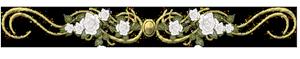 0_3e83c_97381472_M (300x59, 28Kb)