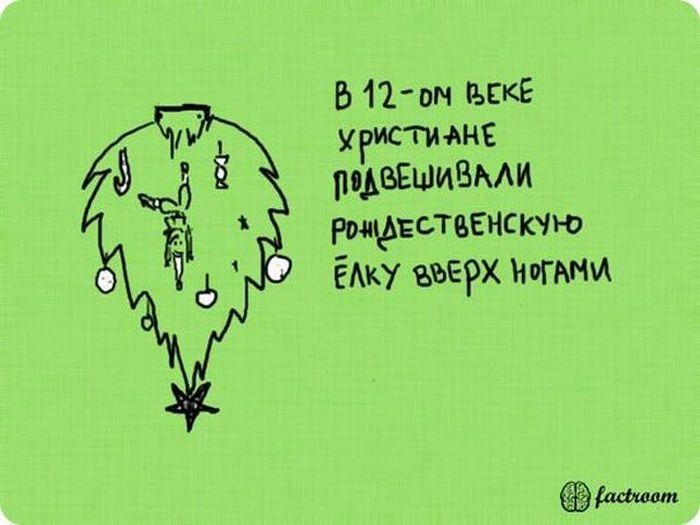 1304581774_fakti_23 (700x525, 41Kb)