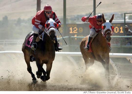 mn_cloned_mule_races (540x388, 34Kb)