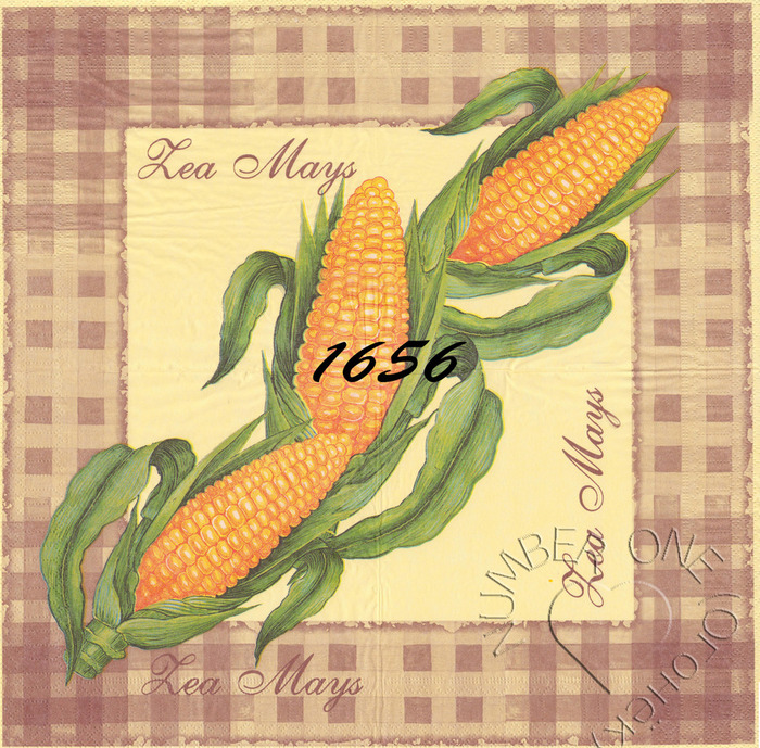 Салфетка маис_лого (700x689, 250Kb)