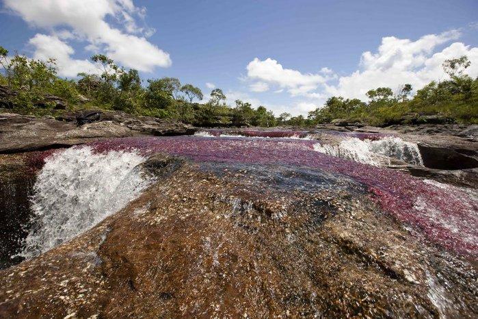 Самая красивая река в мире 3352215_58a99d64ad (700x466, 114Kb)