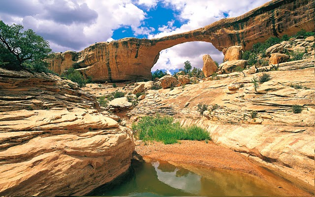 natural_bridge_krasiv.blogspot.com (21) (640x400, 118Kb)