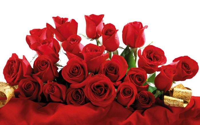 букет красных роз - красиво (700x437, 106Kb)
