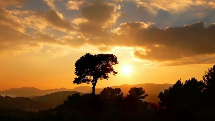 Прекрасный закат солнца 11