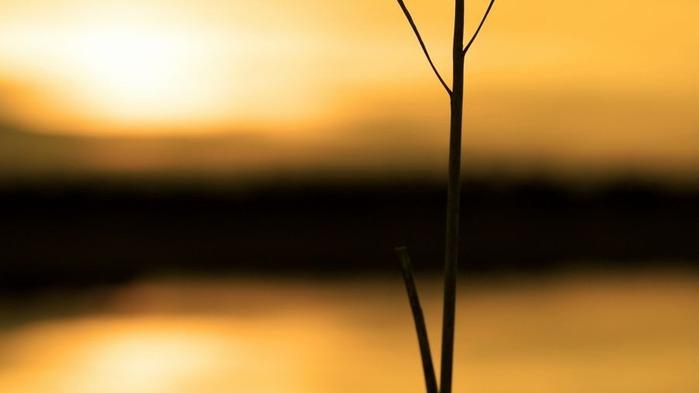 Прекрасный закат солнца 18