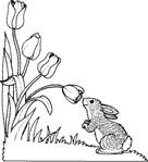 Превью l-bun-flower.gif (466x512, 53Kb)