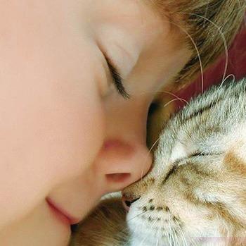 Любая кошка - может быть