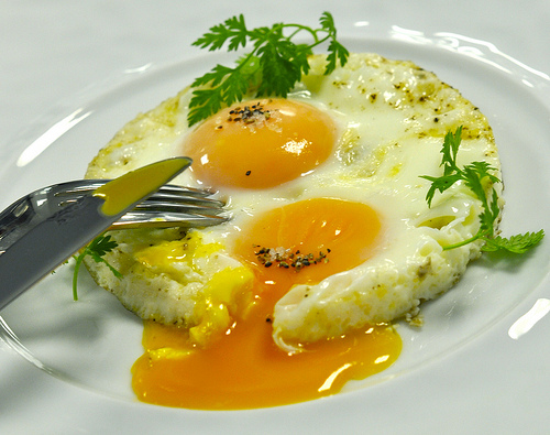 1287162700_eggss (500x395, 122Kb)
