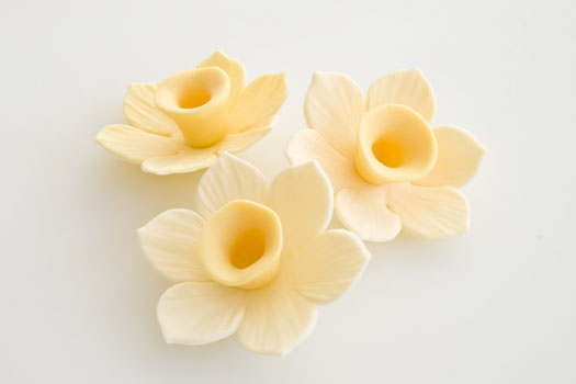 How-to-make-a-gum-paste-daffodil-11 (525x350, 32Kb)