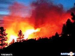 Лесные пожары 3 (250x188, 8Kb)