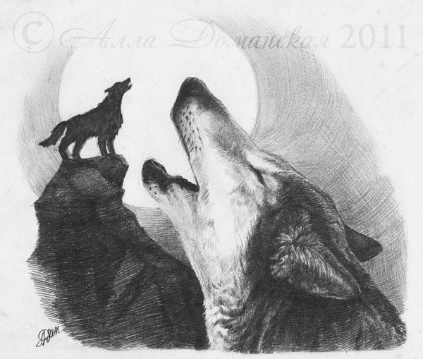 Фото волк воет