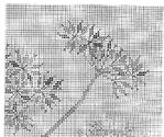 Превью 76 (700x587, 498Kb)