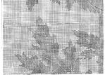 Превью 78 (700x501, 440Kb)