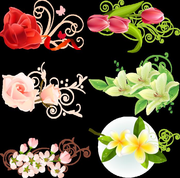 Цветы в векторе картинки 8