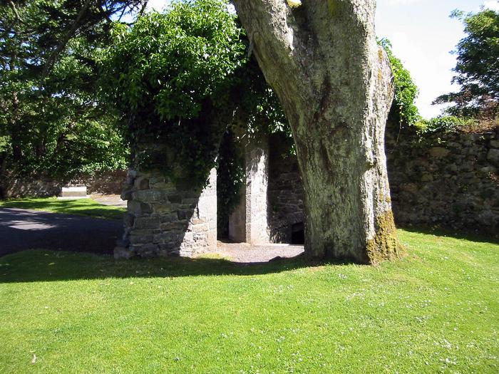 Замок Эшфорд (Ashford Castle) 30910