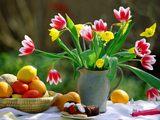 Spring Melody-thumb (160x120, 7Kb)