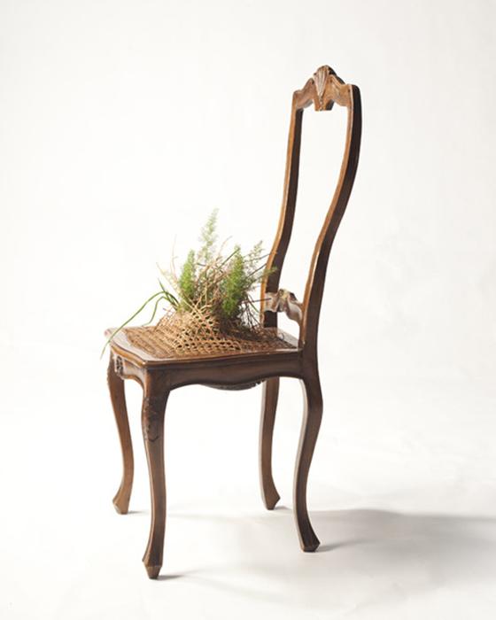 Креативная мебель - Da Morto A Orto/2822077_da_morto31 (560x700, 203Kb)