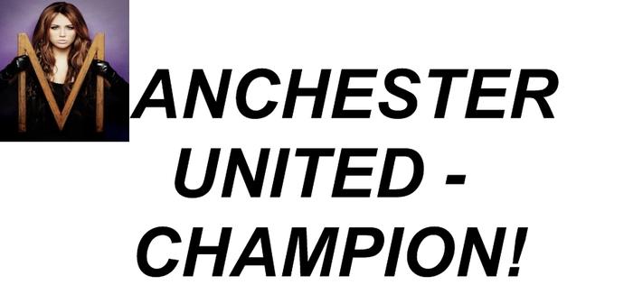 голы английской премьер лиги 2010: