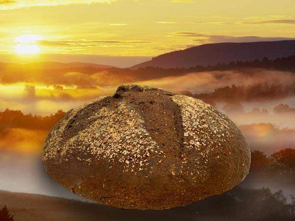 хлеб (600x450, 401Kb)