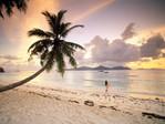 Превью Twilight_Paradise,_La_Digue,_Seychelles (700x525, 103Kb)