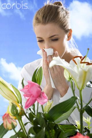 аллергия на амброзию паразиты в организме человека