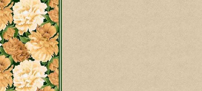 pion21 (700x315, 30Kb)