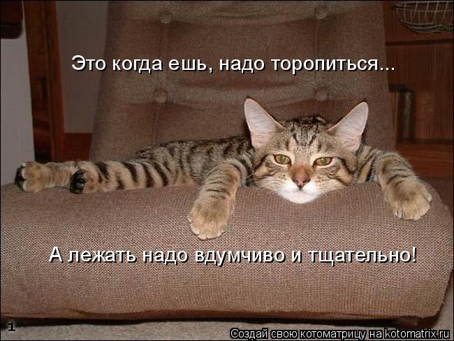 http://img1.liveinternet.ru/images/attach/c/2/74/92/74092185_3802001_1_30.jpg