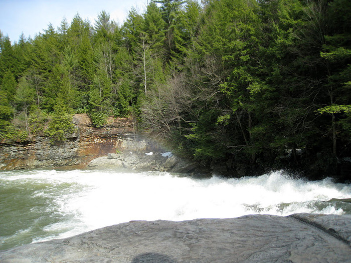 Swallow Falls State Park in Maryland USA 91013