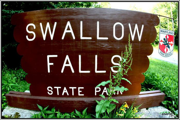 Swallow Falls State Park in Maryland USA 77331