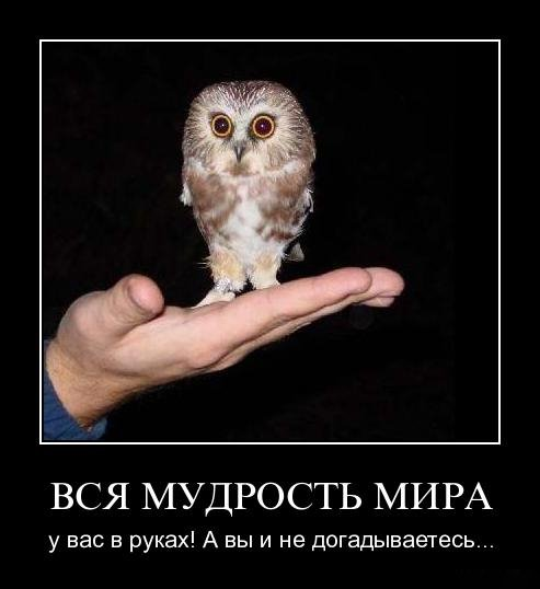 http://img1.liveinternet.ru/images/attach/c/2/82/848/82848999_1296229744_vh8b4r1e9yrq.jpg