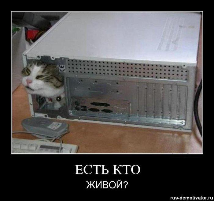 1323255317_est-kto-zhivoy (700x656, 53Kb)