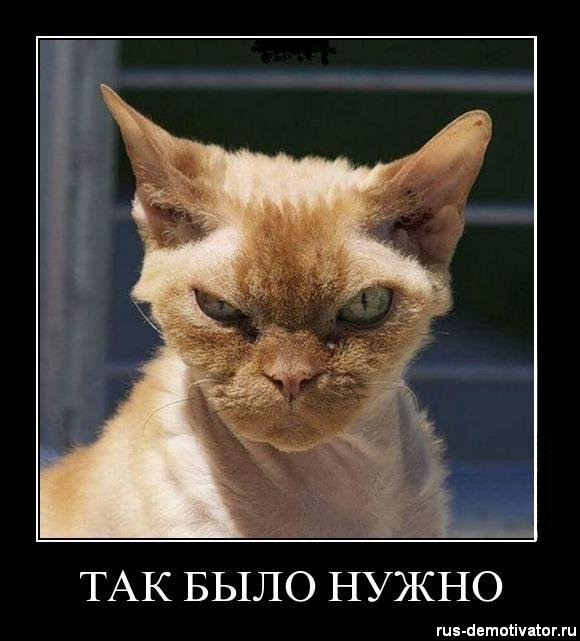 1327299646_tak-bylo-nuzhno (580x641, 55Kb)
