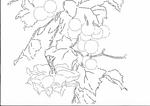 Превью 15-b (700x494, 186Kb)