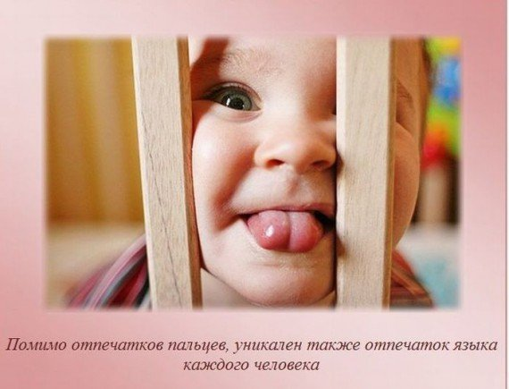 http://img1.liveinternet.ru/images/attach/c/2/82/903/82903187_i1.jpg