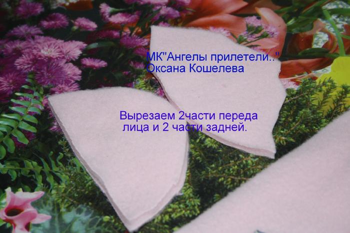 IMG_0998Мкангелы2 (700x467, 421Kb)