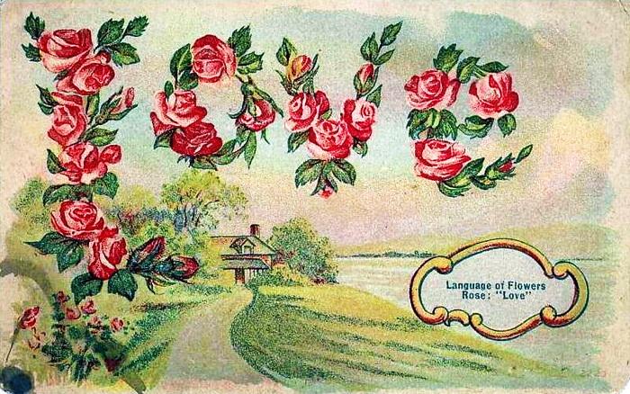 Язык цветов старинные открытки 40