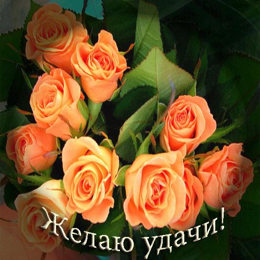 http://img1.liveinternet.ru/images/attach/c/2/82/979/82979811_Za_oc_zhel__udachiIvoliy.jpg
