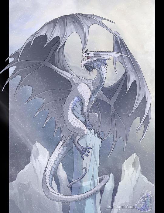 3243458_Frost_Dragon_by_neondragon (540x700, 124Kb)