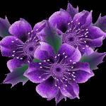 цветы6 (150x150, 6Kb)