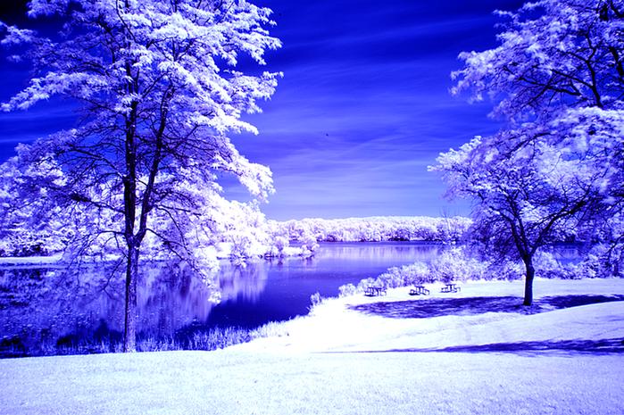 Волшебная красота природы 7 (700x465, 625Kb)