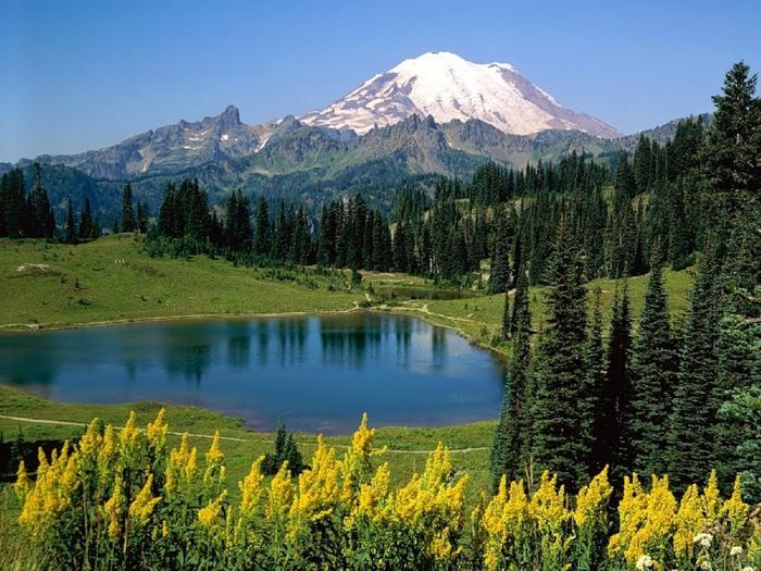 Волшебная красота природы 12 (700x525, 150Kb)