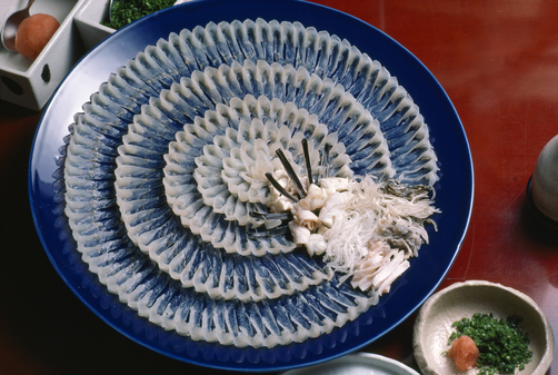 fugu (502x337, 251Kb)