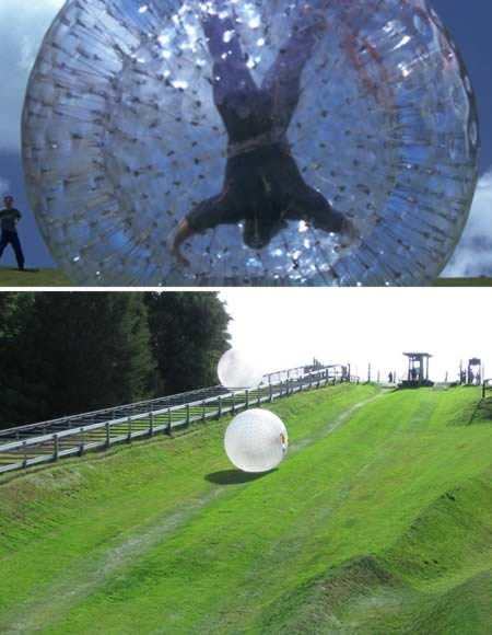 3676705_a98060_extreme_7zorbing (450x580, 37Kb)