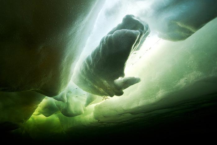 ice-whale (700x466, 101Kb)