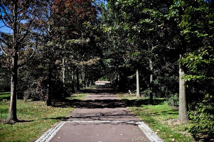 Общественный парк Morris Arboretum, Филадельфия 33375