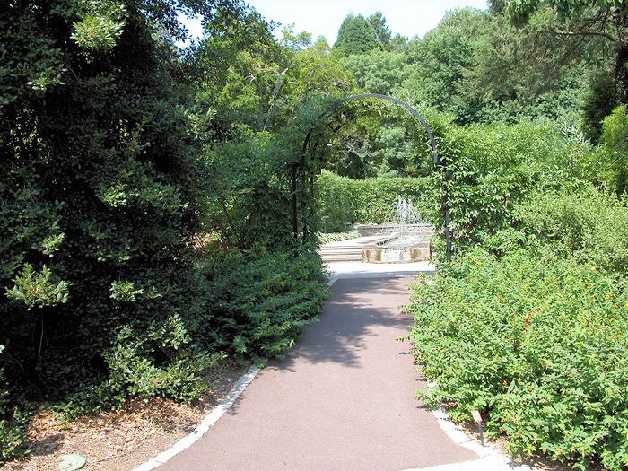 Общественный парк Morris Arboretum, Филадельфия 86767
