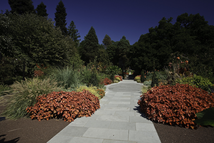 Общественный парк Morris Arboretum, Филадельфия 30968